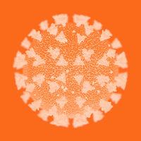 The orange Covid-19 virus