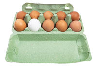 ten various chicken eggs in green box isolated