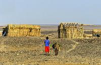 Kleiner Junge mit Esel in der Wüstensiedlung Hamadela