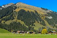 Schutzwald an einem Berghang über den Bauernhäusern der Gemeinde Feutersoey Gsteig