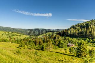 Hügelige Landschaft im Schwarzwald bei Todtmoos, Baden-Württemberg, Deutschland