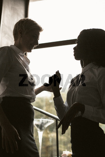 Business Women Communicate Near Window, Two Silhouettes
