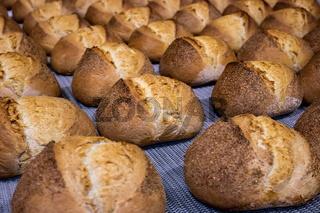 Industrial bread line process