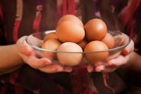A dish of chicken eggs