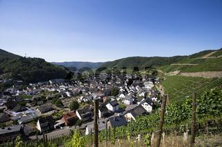Panoramablick Dernau