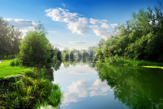 River in the summer