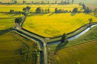wonderful drone view of rice fields