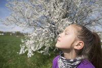 enjoy spring sun