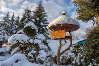 beautiful signpost in winter garden