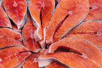 Lot of pieces raw Pacific Red Fish Chinook Salmon cut into steak, ready for cooking various delicious dishes. Close-up flat lay of fresh King Salmon