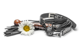 bdsm black leather lash with gag and yellow daisy flower on a white background