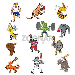 Animal Sports Cartoon Full Body Collection Set