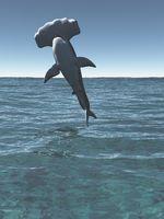 great hammerhead, Sphyrna mokarran 3d rendering