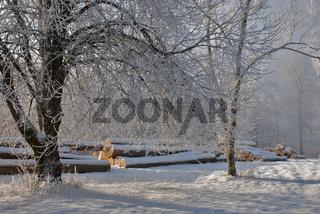 Winterstimmung auf der Schwäbischen Alb