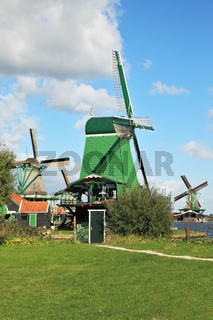 Three windmills and farm buildings on a green meadow