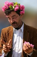 Old man with a rose wreath, Rose fest in Bulgaria