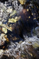 IS_Wasser_22.tif