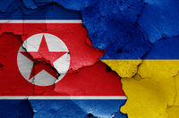 flags of North Korea and Ukraine painted on cracked wall