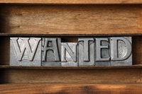 wanted word tray