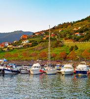 Marina yachts mountains Madeira Portugal