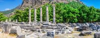 Ruins of the Ancient Temple in Priene, Turkey