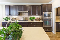 Beautiful Kitchen Interior with Dark Cabinets