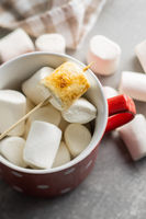 Grilled sweet marshmallows in mug.