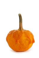 One unusual pumpkin