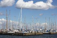 Segelboote im Hafen von Maasholm an der Schlei