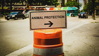 Street Sign to Animal Protection