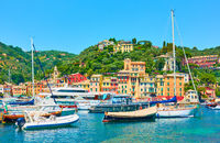 Small potr with yachts and boats in Portofino