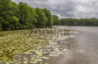 Lake in Wiesenfelden