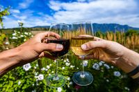 couple wine glasses toasting in nature