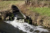 sauberes Wasser fliesst von der Kläranlage in die Erft
