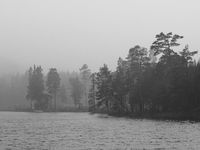 Shore of a lake in Sweden on a rainy day.