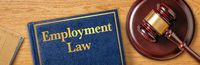A gavel with a law book - Employment Law