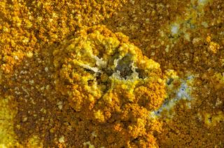 Überreste einer Springquelle mit Fumarolen für den Austritt heisser Gase und Flüssigkeiten,Dallol