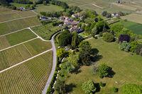 Weiler Vincy mit Rebflächen und Schloss Vincy mit Park, Waadt, Schweiz