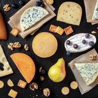 Cheese flat lay. An assortment of many different cheeses, overhead square shot on a black background