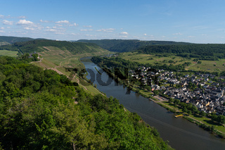 With the bike on the cycle path through the countryside along the river Moselle in Rhineland-Palatinate from Trier to Koblenz in summer