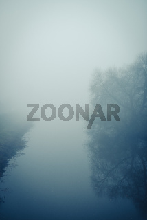 fog at the river