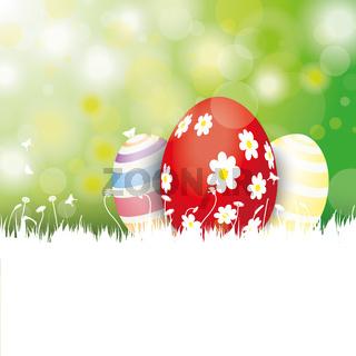 Easter Card 3 Eggs White Grass