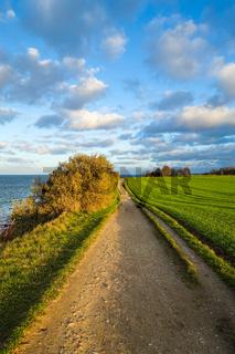 Steilkueste bei Niendorf, Luebecker Bucht, Ostsee, Deutschland