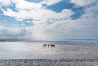 Wattenmeer bei Bensersiel