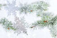 Christmas or winter background with snowflakes.