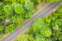 aerial view of road under forest