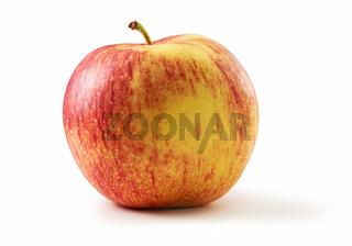 Jonagold-Apfel Freisteller