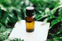 Bottle of herbal essential oil in a green tropical garden, natural scent and organic cosmetics