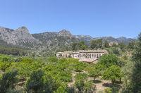 Mallorcas