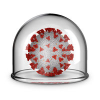Coronavirus under a glass dome